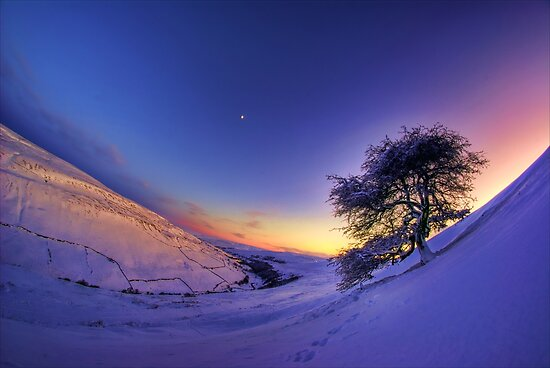 Gunnerside Gill under snow by Guy Carpenter
