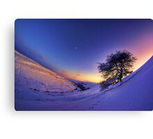 Gunnerside Gill under snow Canvas Print