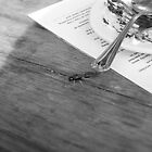 Fly on the table - Lake District  by Kris Extance
