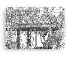 Arbor At Trieste Canvas Print