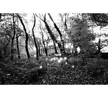 Breathing Light Photographic Print