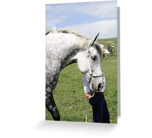 The Old Grey Mare II Greeting Card