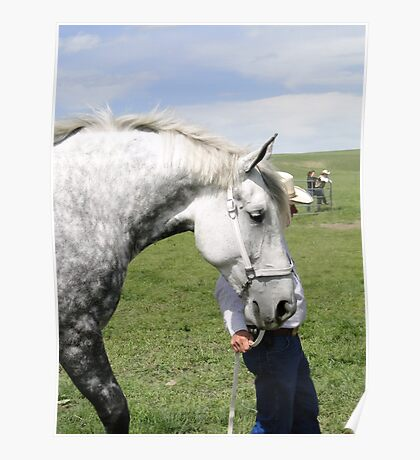 The Old Grey Mare II Poster