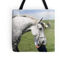 The Old Grey Mare II Tote Bag
