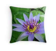Water lily - Colorata, Blue Pigmy Throw Pillow