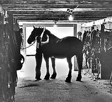 Undressing In The Barn by Al Bourassa