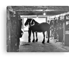 Undressing In The Barn Metal Print