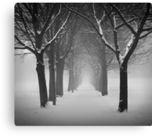 Archway in the snow Canvas Print