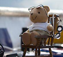 Pilot bear in control. by sandyprints
