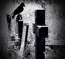 Watchful by Josephine Pugh