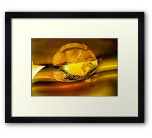 Obsessed with Your Light Framed Print