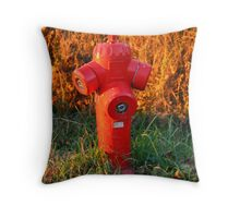 FIRE !   Hydrant Throw Pillow