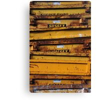 Sunny Sussex Skips Canvas Print