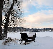 Winter Sleigh by katpix