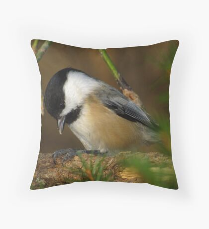 Black-capped Chickadee Eating a Sunflower Seed Throw Pillow