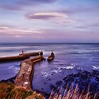 Whitby harbour at first blue light by Guy Carpenter