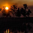 Sunset in the Ibera by photograham