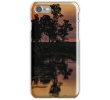 Sunset in the Ibera 2 iPhone Case/Skin