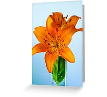 African Lily Greeting Card