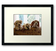 Cute K9 Toys Framed Print
