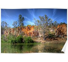 River Willows - The River Murray, Above Renmark, South Australia Poster