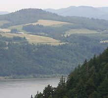 Columbia River Gorge by EHutchison