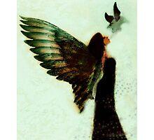 Winging It Photographic Print