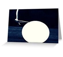 Seagull by the light of the full moon Greeting Card