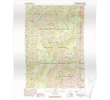 USGS Topo Map Oregon Puderbaugh Ridge 281184 1990 24000 Poster