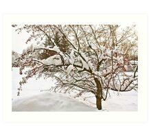 Winter ,, no Wonderland Either! Art Print