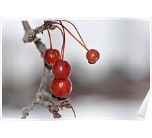 Hi Ho Cherry-O Poster
