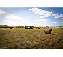 HARVEST TIME AT YAN YEAN Photographic Print