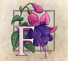 F is for Fuchsia by Stephanie Smith