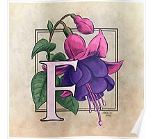 F is for Fuchsia Poster