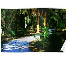 Tropical Forest Path Poster