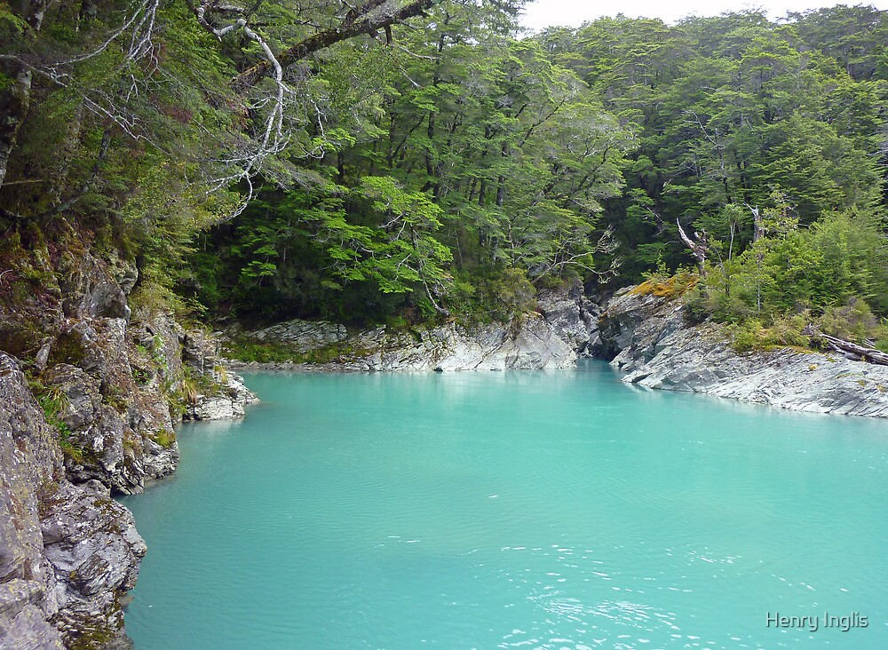 Glacial Melt Water - Dart River by Henry Inglis