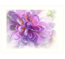 Aubergine Petals Art Print