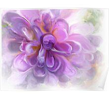 Aubergine Petals Poster
