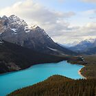 Peyto lake in Banff National park by Pierre Leclerc