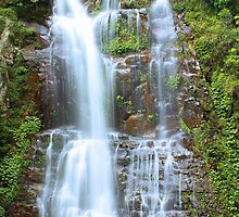 Minnamurra Falls by Tamara Dandy