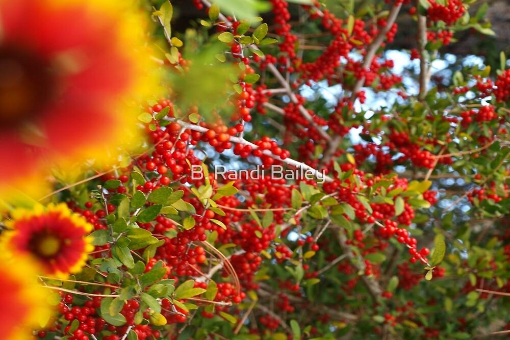Florida seasonal medley by ♥⊱ B. Randi Bailey
