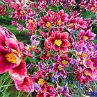 Sea Of Flowers by Amy Dee
