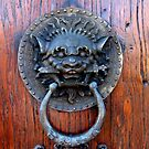 Door Knocker by Gloria Abbey