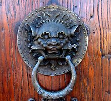 Door Knocker by Gloria Abbey