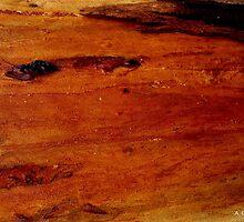 Beautiful Gum Tree Trunk 5 by Angela Gannicott
