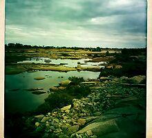 Greenough River by Pene Stevens