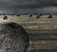 After The Harvest by Vince Russell