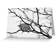 Soliloquy Greeting Card