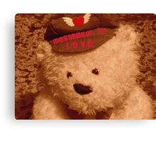 The Love Of An Old Teddy Canvas Print