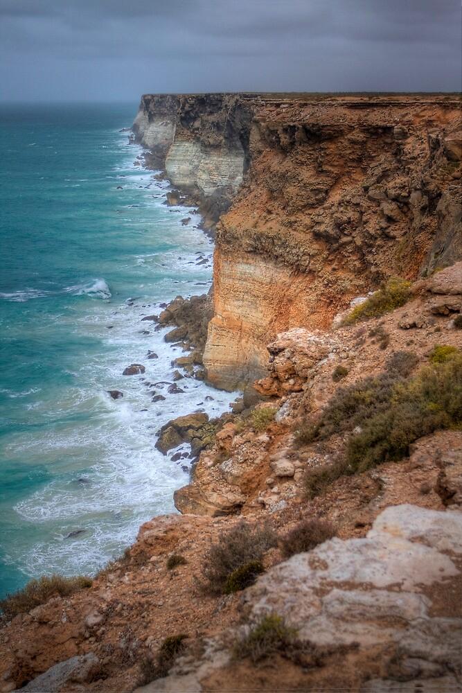 The Great Australian Bight by Emma  Smith